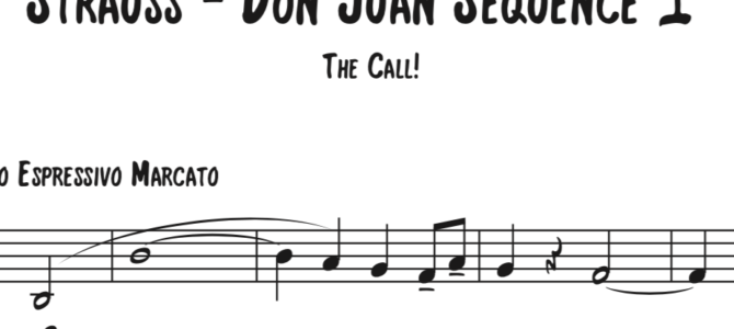 Strauss – Don Juan Sequence 1